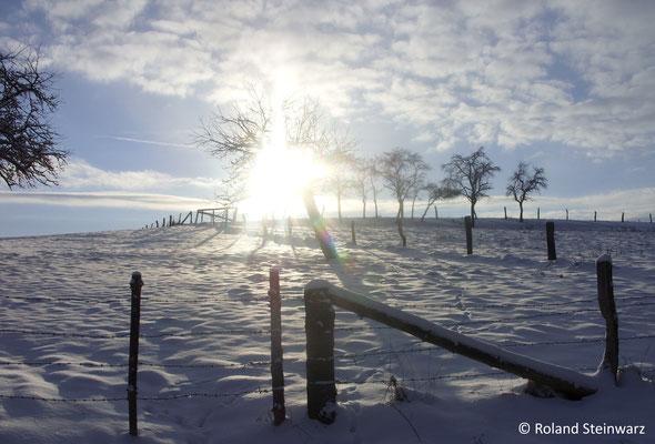 Wintersonne, verschneite Obswiese bei Fernegierscheid