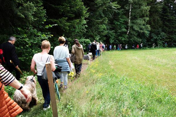 Im Laufe des Nachmittags haben rund 80 Besucher die Open-Air Vernissage besucht