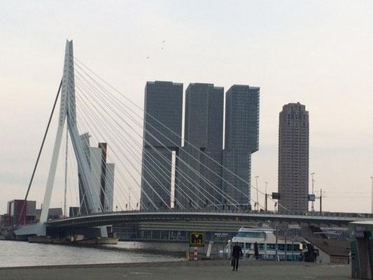 Geht man nach Rotterdam, ist das gleich eine andere Welt.