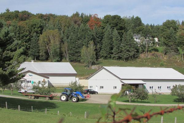 Tracteur et wagon pour apporter balles de foin (Crédit photo: Claudette Morin)