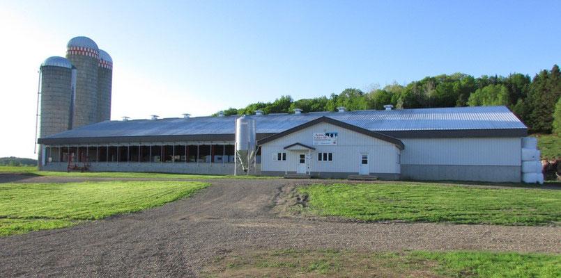 Bâtiments et équipements afin d'assurer le confort des vaches laitières. Crédit-photo: Claudette Morin