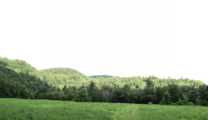 Vallée Verte - terres longeant la Rivière L'Assomption (Crédit photo: Claudette Morin)