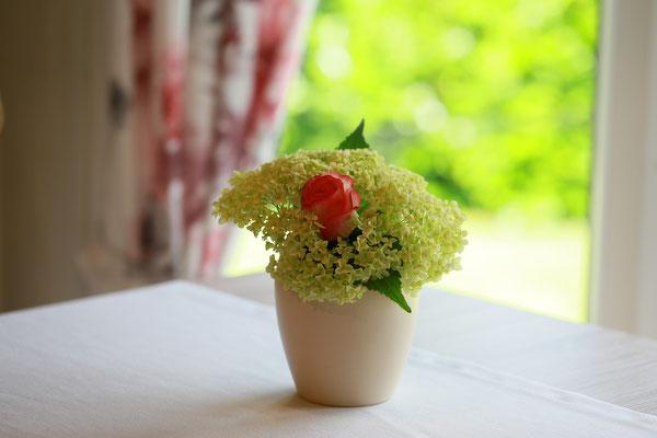 ... und ein kleiner Blumengruß heißt Sie herzlich willkommen :)