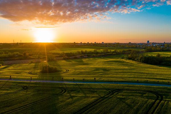 Feld bei Rostock im Sonnenuntergang
