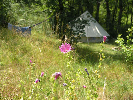 Eco accommodation yoga and meditation retreat centre South France
