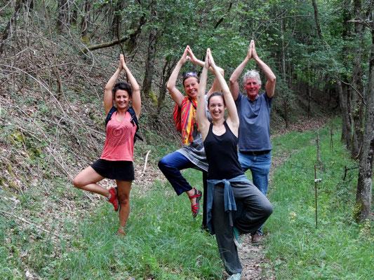 Retraite de yoga en pleine nature au Centre Viveka