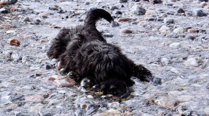 Ist das Wasser noch so kalt, Camille muss baden