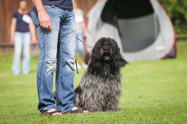 Cooper bei der Rüdenparade