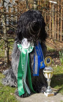 Edley Cooper - BOB Cacib Offenburg - Alpensieger und Orthenausieger