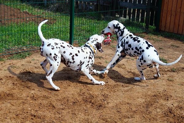 Тагер и Лилу