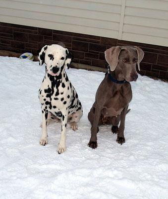 Лилу и Гера