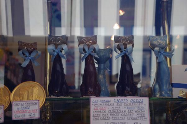 Une vitrine alléchante : le chat bleu