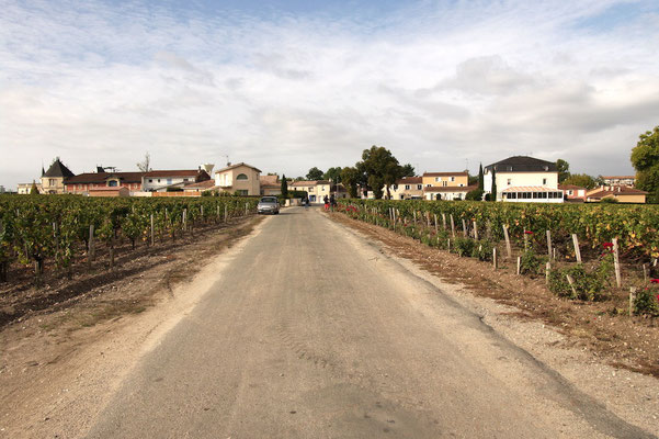 Ce chemin sépare les vignobles de 2 domaines au classement différent !!!