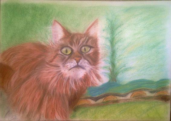 Jaska *** gemalt mit Pastellkreide