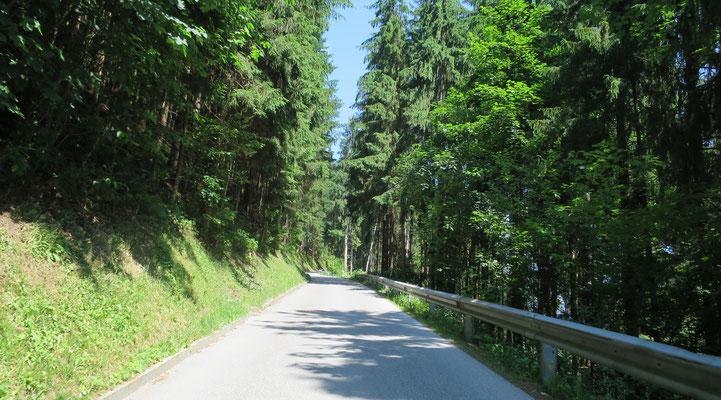 ...Auffahrt zur Zillertaler Höhenstraße über Ried/Kaltenbach...
