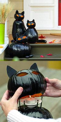 Katzen Kürbisse für Halloween