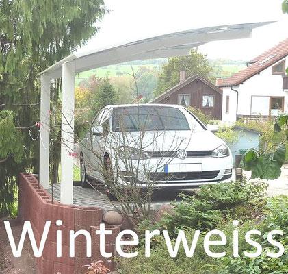 """Beispiel-Nr. XP28   Sonderfarbton """"winterweiß"""" nur bei Portoforte 80 in der Größe  2704x4954 lieferbar!"""