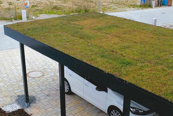 Beispiel-Nr. ST-A17   Auf Wunsch möglich:  ext. Dachbegrünung durch patentierten Gründach-Aufsatzrahmen