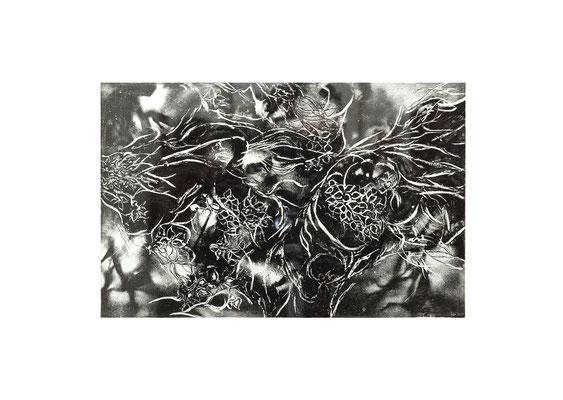 Masato Nagai/永井雅人 「夜と華」銅版画、紙 2014年