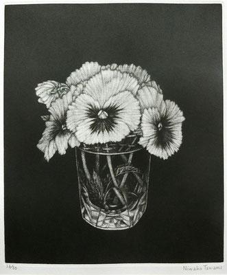 丹阿弥丹波子  パンジー  メゾチント、紙 1999年