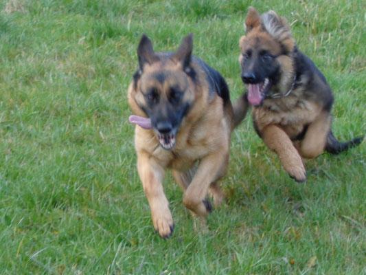 Cheyenne und Kelly
