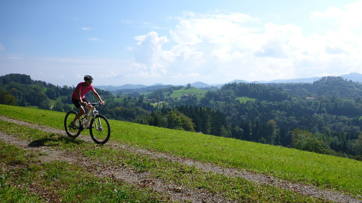 Mountainbikeparadies