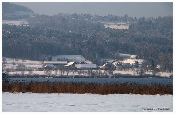 Greifensee (8745)