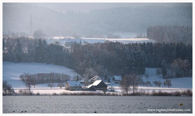 Greifensee (8776)