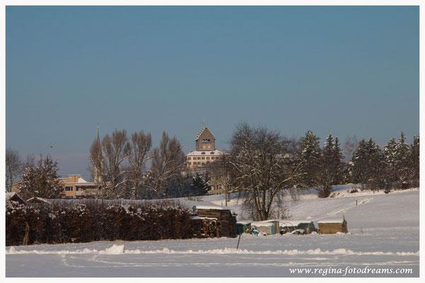 Burg Uster (8820)