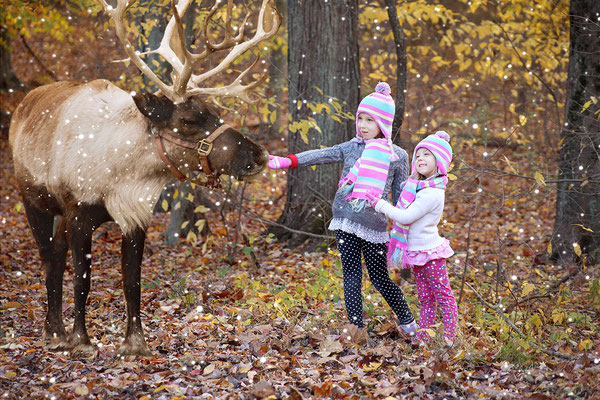 Sisters & Reindeer <3  Christmas photo session. Family and fall photo session. Girls Photo shot in the park Neshaminy Park. Fall photo session in the Penny park. Photographer PA, NJ, NY Gosia and Steve Tudruj 215-837-6651 www.momentsinlifephoto.com