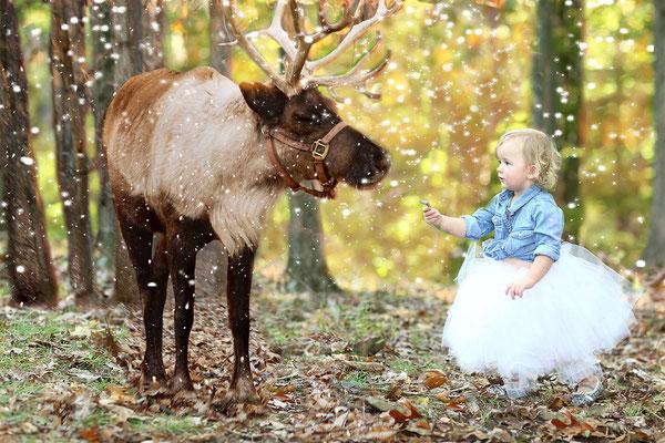 Family and fall. Reindeer and girls. Photographer PA, NJ, NY Gosia and Steve Tudruj 215-837-6651 www.momentsinlifephoto.com