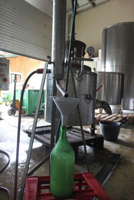 Wasserdampfextraktion für unseren Thymianextrakt welchen wir im Weingarten gegen Pilzerkarnkungen einsetzen.