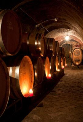 Johannes Zillingers traditioneller Erdkeller am Kellerberg zur Reifung der Rotweine.