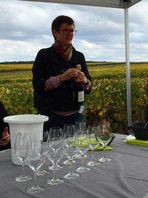 degustation-de-vins-dans-le-vignoble-oenologie-Vouvray-Touraine-Tours-Amboise-activite-originale-insolite-Rendez-Vous-dansles-Vignes-Myriam-Fouasse-Robert