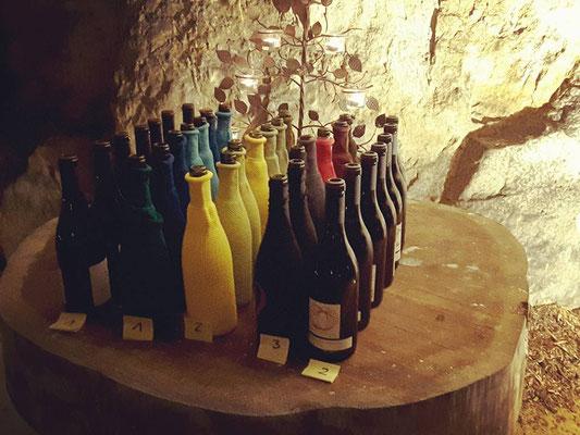 animation-oenologie-degustation-vin-Vallee-Loire-Touraine-Tours-Amboise-Vouvray-Rendez-Vous-dans-les-Vignes
