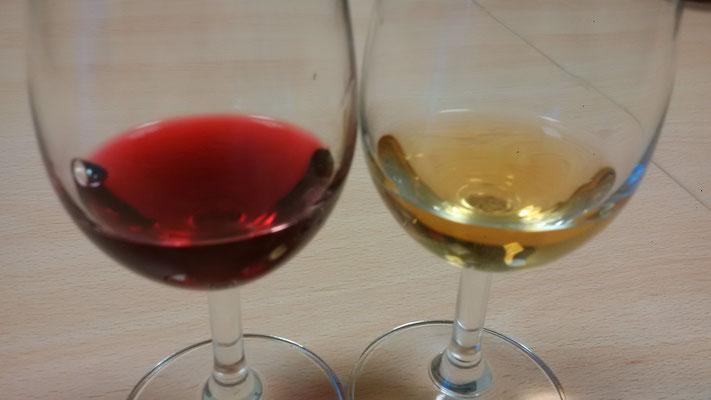 oenologie-degustation-vins-rouge-blanc-vietnam