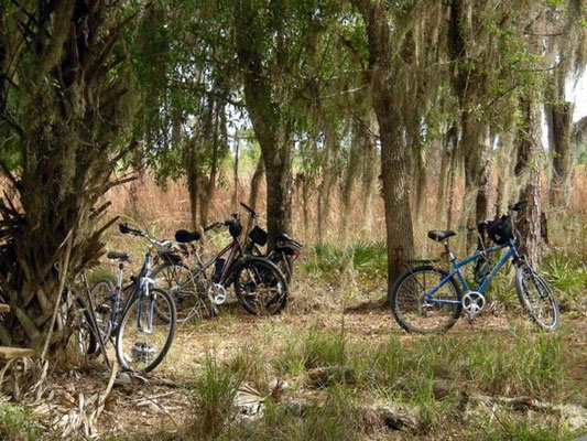 7 miles from parking-- Bikes allow access to remote parts of the Reserve in a day.
