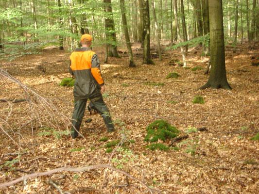 BSs Hürtgenwald 2011