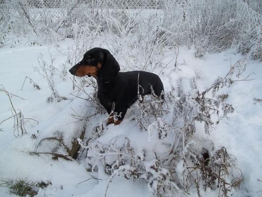 Winterwetter genießen