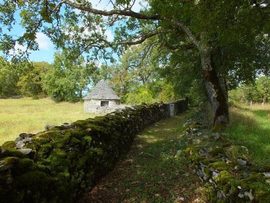 Caselle, cabane des bergers en pierres sèches