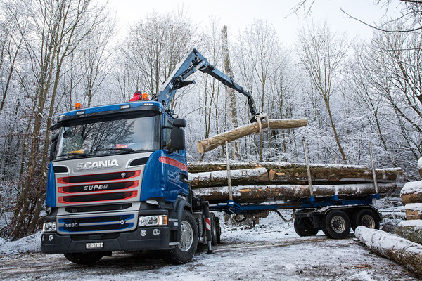 Holzhandel Schweiz
