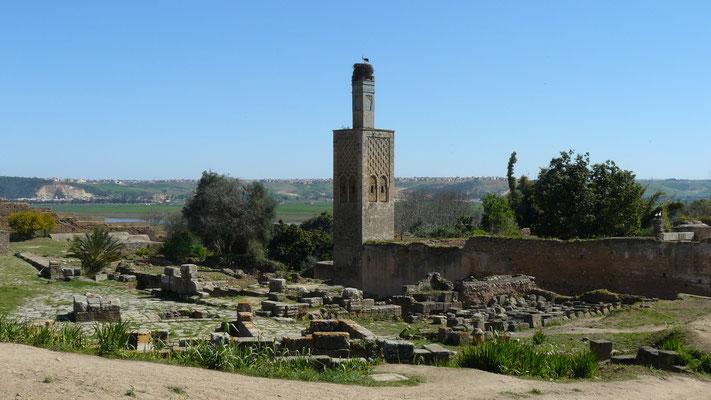 Les ruines de Chella