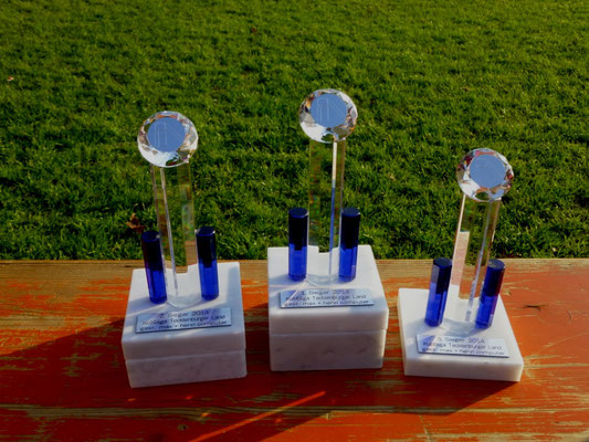 Ligapokale 2014