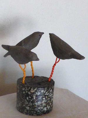 Oiseaux (SCA01)