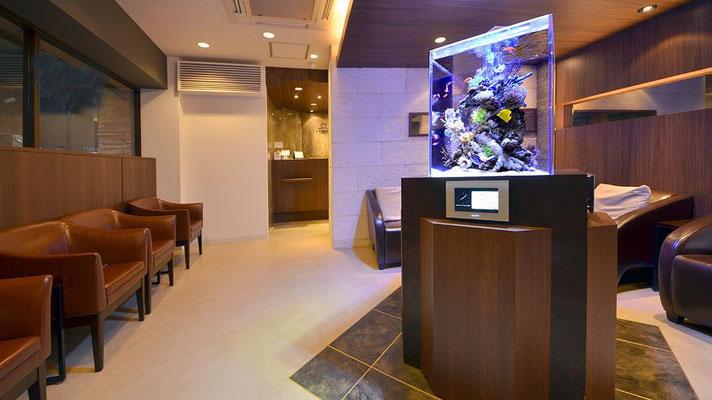 海水魚水槽 病院設置事例