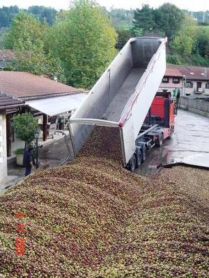 29 tonnes de pommes arrivent après un voyage de 10 heures de Normandie