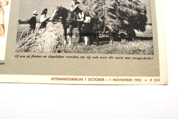 """Affiche /Poster Jeugdstorm,  """"Ouders wat kiest U ?"""" 1943."""