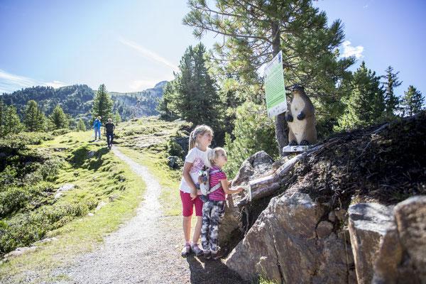 © Ötztal Tourismus Photograf eye5.li - Daniel Zangerl Bildbeschreibung Ötztal, Region Oetz, Almenregion Hochoetz, WIDIVERUM Hochoetz, Sommer, Familie, Kinder, Wandern, Wiese, Berge, Wanderweg, blauer Himmel, Stein
