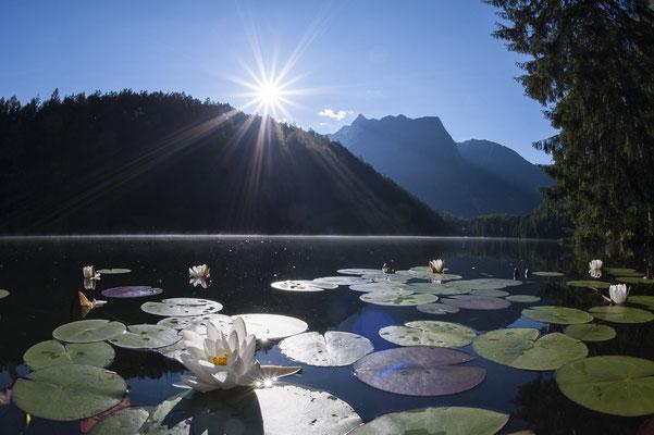 © Ötztal Tourismus Photograf Matthias Burtscher Bildbeschreibung Region Oetz, Piburger See, Sommer, Wasser, Bäume, Wald, Berge, Seerosen, Sonnenstrahlen, Acherkogel, Stimmung, Blumen