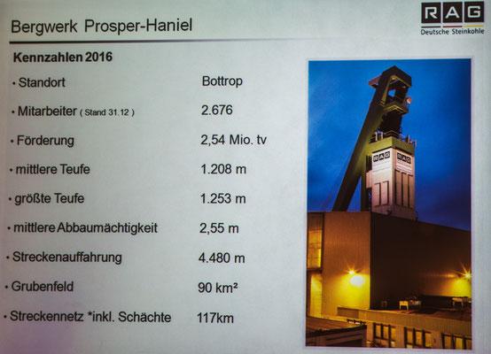 Prosper Schacht 10 Bottrop